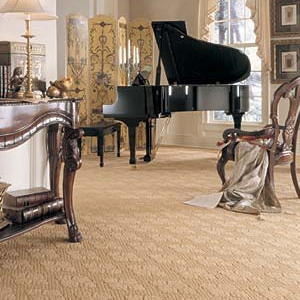 Contempo Carpet 3